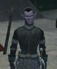 EverQuest II - News - Alternate Character Models in EQII