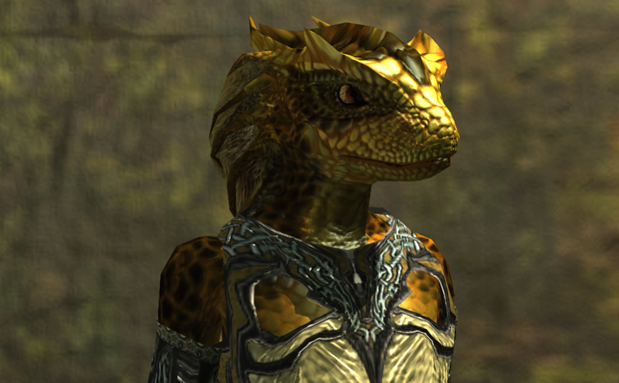 Everquest Ii News Get To Know A Fellow Player Sesketh